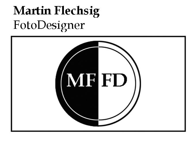 Martin Flechsig