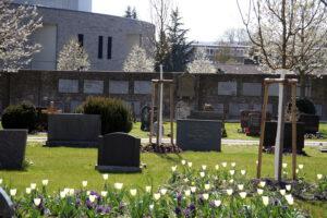 Altstadtfriedhof